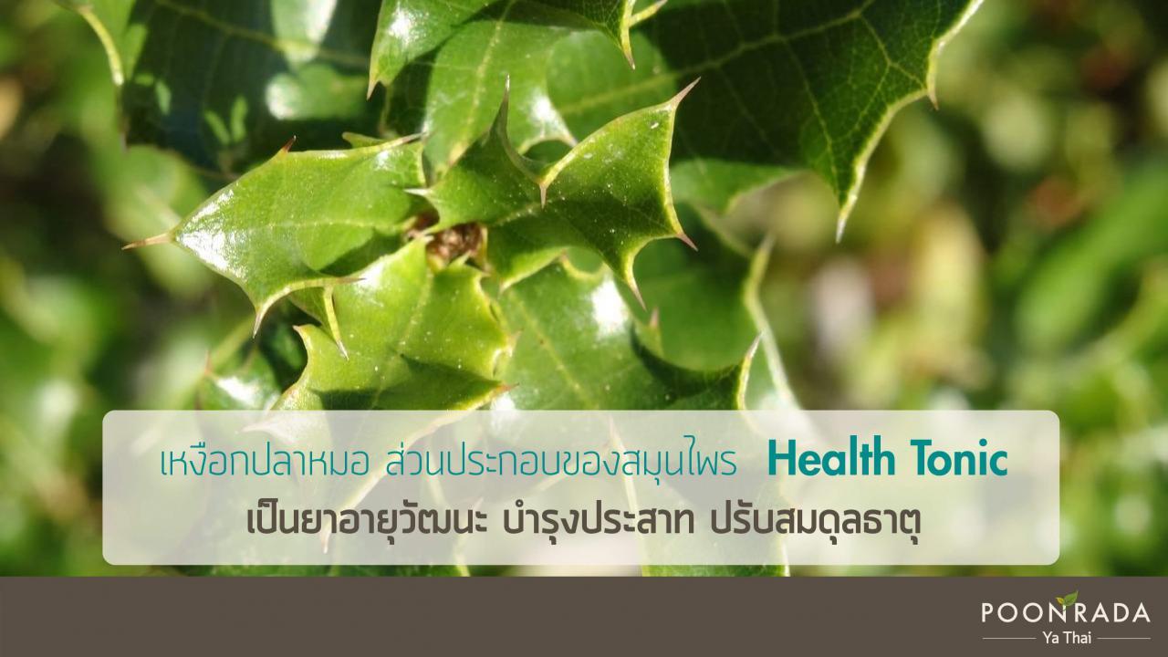ฟื้นฟูร่างกาย_ปรับธาตุด้วยhealth_tonic-4