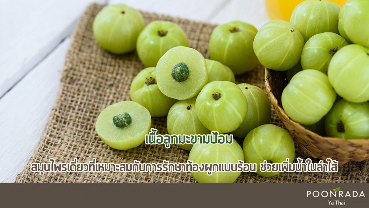 สมุนไพรไทยรักษาท้องผูกแบบแกร่ง-2_(1)