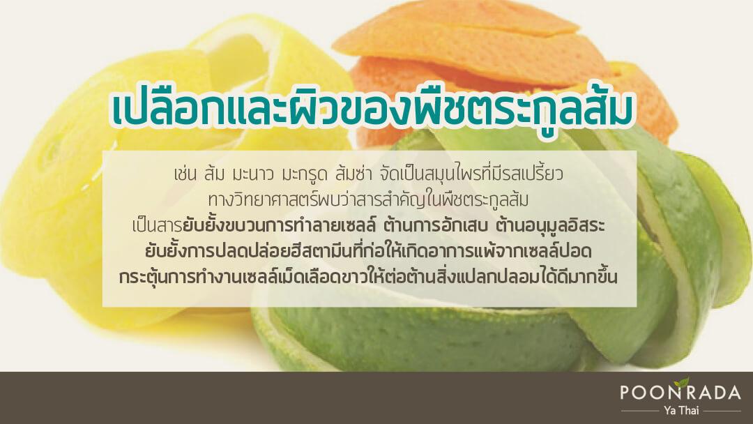 สมุนไพรไทย ต้านcovid19 2