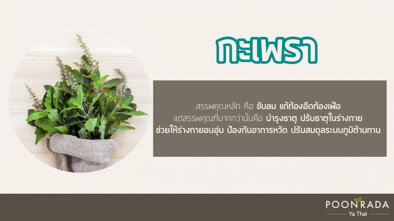 สมุนไพรไทย ต้านcovid19 3