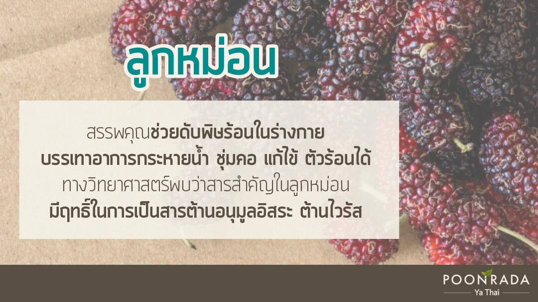 สมุนไพรไทย ต้านcovid19 5