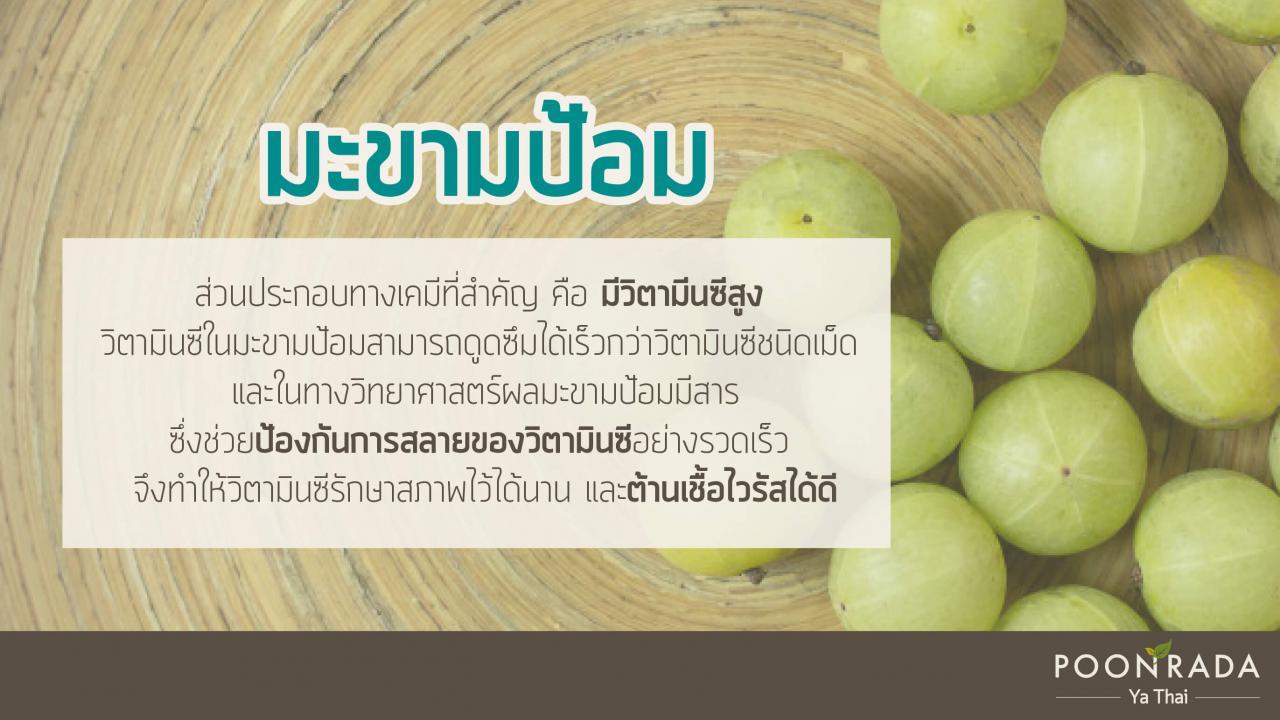 สมุนไพรไทย ต้านcovid19 4